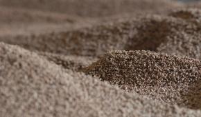 Energia da biomassa: scopriamo cos'è e i suoi vantaggi