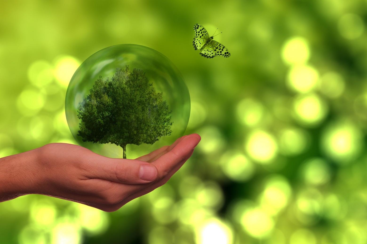 Come ridurre i consumi energia elettrica sulla tua linea di produzione
